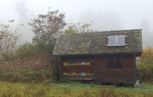 Solar Power Kit on House